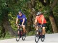 Bikecat-Mariposa-Girona-to-Empuries-Cycling-Tour-2019-021