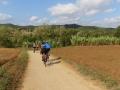 Bikecat-Mariposa-Girona-to-Empuries-Cycling-Tour-2019-024