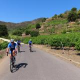 Bikecat-M2-Giorna-Costa-Brava-Cycling-Tour-2021-024