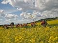 Bikecat-Marks-Tour-of-Catalunya-2019-012