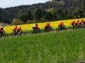 Bikecat-Marks-Tour-of-Catalunya-2019-020