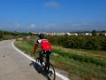 Bikecat-Mariposa-Priorat-Wine-Tour-2018-024