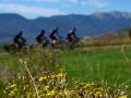 Bikecat-Mariposa-Pyrenees-to-Girona-Cycling-Tour-2019-013