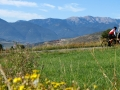 Bikecat-Mariposa-Pyrenees-to-Girona-Cycling-Tour-2019-014