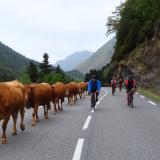 Trans-Pyrenees-Cycling-Tour-2021-Bikecat-020