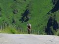 Bikecat-Transpirinaica-Tour-2019-146