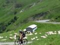 Bikecat-Transpirinaica-Tour-2019-162