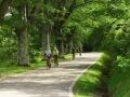 Bikecat-Transpirinaica-Tour-2019-198