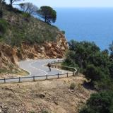 Bikecat-VeloVeneto-Best-of-Girona-2018-023