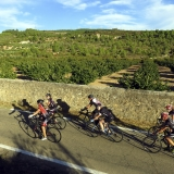 Bikecat-Wine-Tour-2016-006