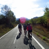 Bikecat-Wine-Tour-2016-011