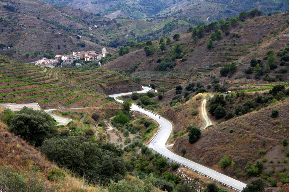 Cycling in Priorat Wine region - Bikecat